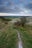 From Pewsey Down  11b_DSC_0569