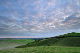 From Pewsey Down  11b_DSC_0590