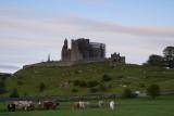 The Rock of Cashel  12_d800_0819