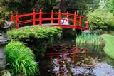 Japanese Gardens, Irish National Stud  12_d90_DSC_0118