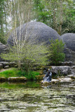 Saint Fiachra's Garden, Irish National Stud  12_d90_DSC_0285