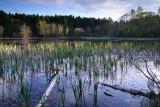 Donadea Forest Park  12_d800_0960