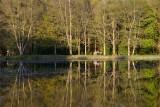 Donadea Forest Park  12_d800_0989