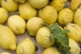 Genuine lemons - Ischia