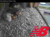 Adult Peregrine: feeding time for 2 chicks continued w/ 2 unhtached eggs