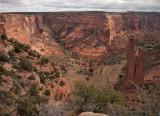 P5113599 Verdant Spring at Canyon de Chelly