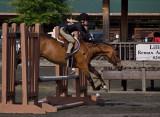 P5294710 Little Jumper