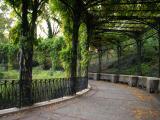 Central Park, Sunday, Nov. 13, 2005 NY NYC Manhattan