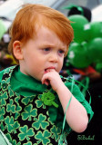 The Face of St Patrick's Day 2011