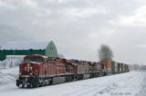 Snow Chute 2011