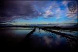 Candaba Wetlands (sunrise)