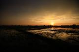 Candaba Wetlands Sunrise
