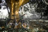 bike03anvaya.jpg
