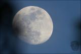 Moon - July 01, 2012