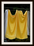 The Yellow Towels