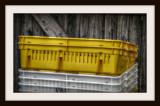 The Yellow Basket