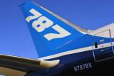Boeing 787-8 Dreamliner (N787BX)
