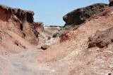Wadi Walk - Geology of Sir Bani Yas