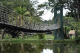 Bridge across the pond, Viharamahadevi Park