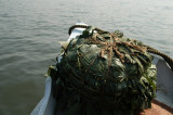 Some of the cargo on our boat - a giant bale of what looks like banana leaves