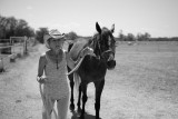 Equine Imagery