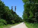 Saucon Rail Trail