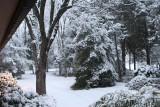 Snow 17 Jan 2008
