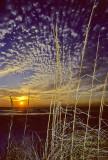 Kodachrome Sunset Sea Oats Mackerel Sky