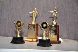 :: 2010 Area 6 Humorous and Table Topics Contest ::