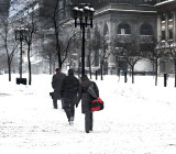 A Snow day in Montreal