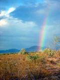 rainbow AZ