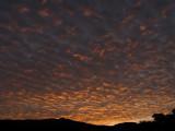 Sunsets at Kona (8)