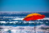 Orange umbrella at Manly Beach