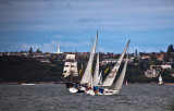 Yachts on Sydney Harbour with tallship