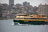Manly Ferry Freshwater in Harbour