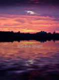 Narrabeen sunrise portrait