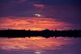 Narrabeen sunrise