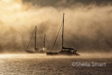 Two yachts in rolling mist in Bay of Islands, New Zealand