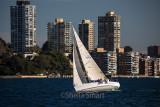 Yacht in race on Sydney Harbour
