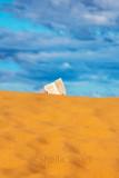 The dune reader