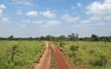 Road to Nappi Village
