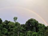 Maipaima Rainbow
