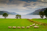 Loch Ness - the Eastern Shore