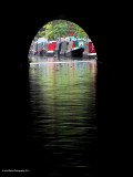 Boats At The End of The Tunnel