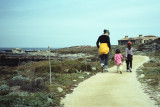 Monterey pt. 2