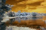 IR Loon Lake 1598.jpg