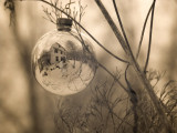 Reflecting Ball 0028.jpg