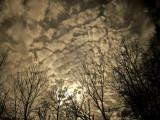 Sky 0043.jpg