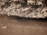 Spruce  Ice 0075.jpg
