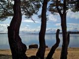 Sweden, April 2012